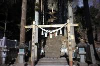 中之嶽神社・・・2 - 桐一葉