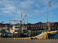 君は、イカ釣り船を見たか!? - 風景ノート。