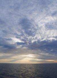 テタマヌ2 - タヒチ ランギロア島暮らし~北のコジョウ森人日記