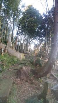 【墓地整備】 - 浄教寺
