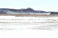 湿原に白煙が残った- 2017年冬・釧網線 - - ねこの撮った汽車