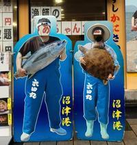 沼津港 漁師夫婦 / Numazu Fisherman & Fisherwoman - HameMichelin - KAOHAME Guide