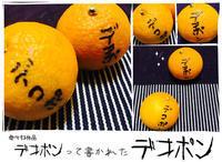 食卓のデザイン#42:デコポンって書かれた「デコポン」! - maki+saegusa