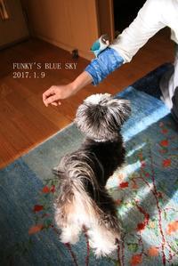 B.B&Chipo*行っちゃった~~、、、と、 - FUNKY'S BLUE SKY