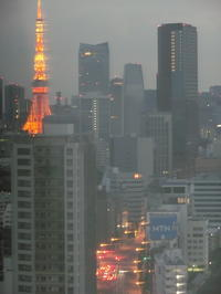 花のお江戸で思う事「東京タワー派?スカイツリー派?」・・・編 - ドライフラワーギャラリー⁂ふくことカフェ