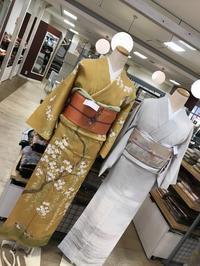 《アクア店》春礼装コーディネート - MEDELL STAFF BLOG