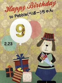 happy birthday, Pebble !! - へごきゃらにゃっぺ