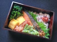 2/9鮭弁当 - ひとりぼっちランチ