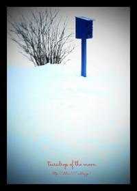 *青いポスト* - 心写心癒  ~心の鏡~