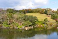 万博記念公園の日本庭園 - アーバン・ガーデン・ウォッチング