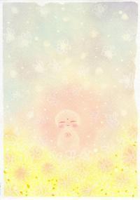 菊がふる - 島美砂☆rocco生活