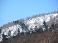 クワ馬鹿な冬期採集アイテム購入 - Kuwashinブログ