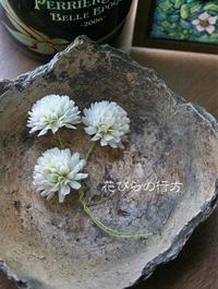 新しいシロツメ草を考える & 最近行ったピアノリサイタル - 布の花~花びらの行方 Ⅱ