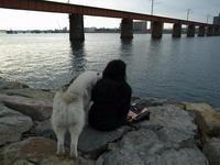 きれいなお姉さんは好き~♡(^o^) - 犬連れへんろ*二人と一匹のはなし*