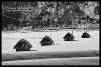 蒜山-2 - 気ままな Digital PhotoⅡ
