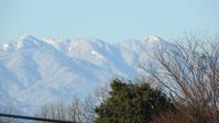 2月野川野鳥観察会 - 山と鳥を愛するアナパパ