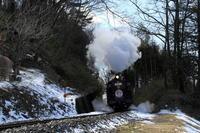 残雪- 2017年冬・真岡 - - ねこの撮った汽車