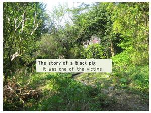 The story of a black pig - もうひとつの庭