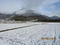 1月以上との寒波予想も大したことなく - 妙見山麓をわたる風