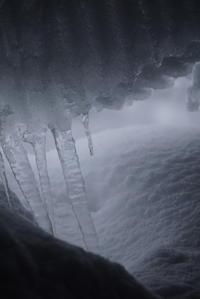どか雪とイノシシ - Mineral's&Cameraの日記