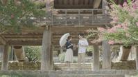 「安東ククス屋の女」「笑い失格」KBSドラマスペシャル2016その4 - なんじゃもんじゃ