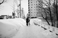 雪国のママチャリと中古車 - 照片画廊