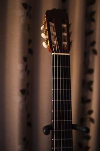 Guitar - 花と風景 Photo blog