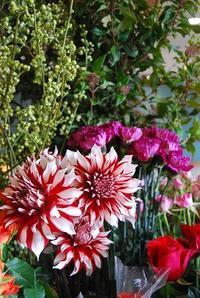 フラワーバレンタインは明日! - 花と暮らす店 木花 Mocca