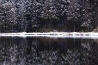 雪の日 - ratoの山歩き