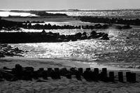 光りは春の海で - Yoshi-A の写真の楽しみ