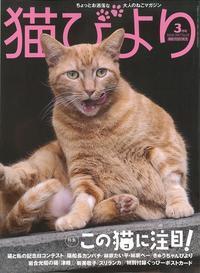 猫びより 2017年3月号 - 猫の目かわら版