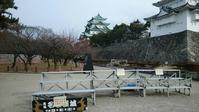 名古屋城と古戦場とイオンモール長久手 - 私のぐだぐたな毎日