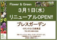 オープン日、決定!!♪( ´▽`) - ブレスガーデン Breath Garden 大阪・泉南のお花屋さんです。バルーンもはじめました。