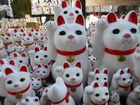 ねこ、ネコ、招き猫だらけ♪豪徳寺&羽根木公園の梅園♪ - ルソイの半バックパッカー旅