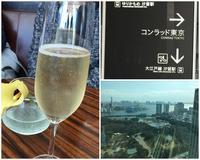 17年2月17日ホテルランチ&健康博覧会! - 旅行犬 さくら 桃子 あんず 日記