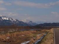 160304-06 九頭龍川サクラマス58cm - river trekker