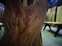 欅(ケヤキ)一枚板 - SOLiD「無垢材セレクトカタログ」/ 材木店・製材所 新発田屋(シバタヤ)