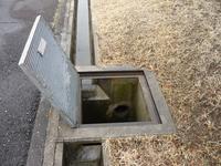 消毒日 - Longhill Net Blog