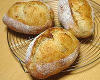 ライ麦入りクッペ - ~あこパン日記~さあパンを焼きましょう
