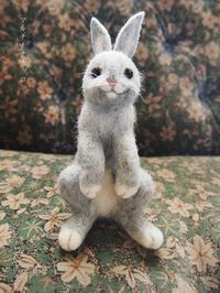 羊毛フェルト*ウサギ様 - マルチナチャッコ