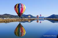 ~ hot air balloon ~2017.2.19 - Yathbee's Photo