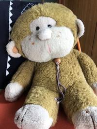 Simon(サイモン)です - COCO塾ジュニア 茶屋町ジュニア教室