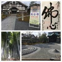 京都六日目 - ソラネコ写真館