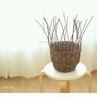 ■カゴ編みあけびで編むカゴバック - 木の実、ドライフラワーのある暮らし ■東京■長野 木の実、ドライフラワー、スパイスのアレンジメント