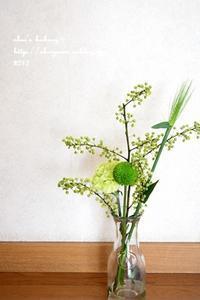 和菓子で春気分 - *sheipann cafe*