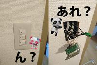 これわぁ~...( ゚Д゚) - 西村電気商会|東近江市|元気に電気!