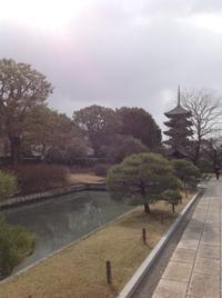 寒の戻り 東寺弘法市 - MOTTAINAIクラフトあまた 京都たより