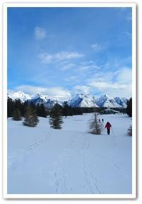 Snowshoeing around Golf Course & Bow Falls - カナディアンロッキーで暮らす