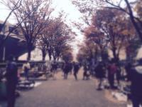 大江戸骨董市@代々木公園行き方紹介 - うつわ愛好家 ふみの のブログ