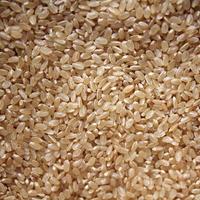あきたこまち 無農薬植物性有機肥料 玄米 / わらふぁーむ - bambooforest blog